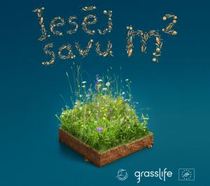 """BJC """"Daugmale"""" Latvijas Dabas fonda projektā GrassLIFE – iesēj savu pļavas kvadrātmetru!"""